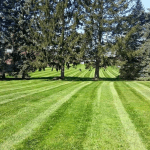 North Canton Ohio Lawn Care