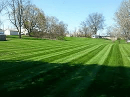 Canton Lawn Care, Maintenance, and Mowing